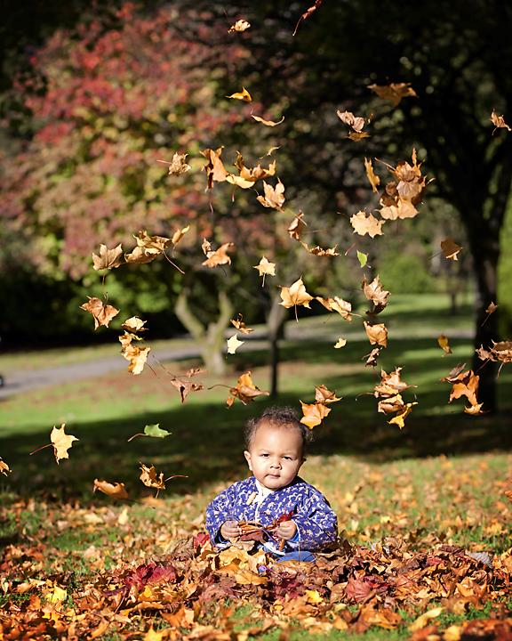 fb-Morgan-Leaves1